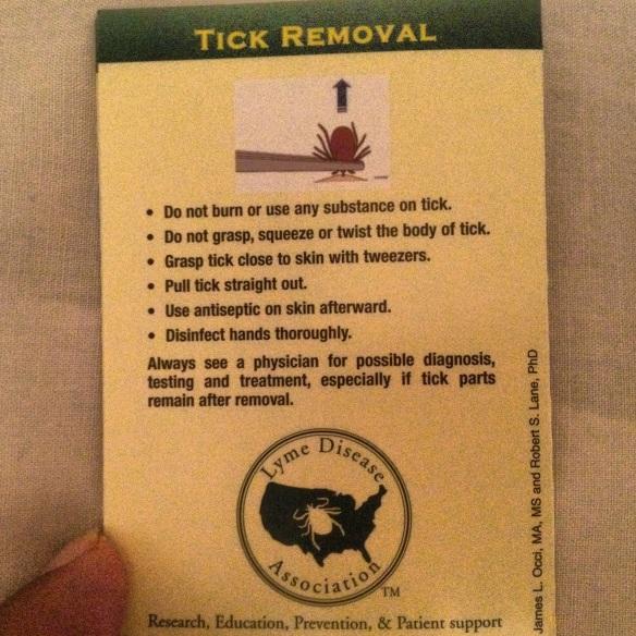 Proper Tick Removal